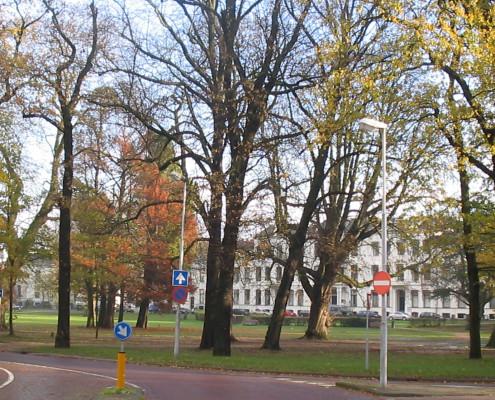 Haarlem_Kenaupark